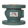 Picture of VALMATIC SILENT CHECK VALVE | GLOBE | 8"