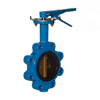 """Picture of WATTS BUTTERFLY VALVE 